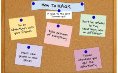 How To H.A.G.S.