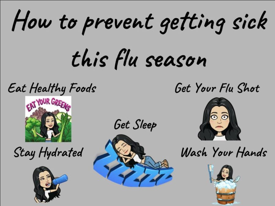 Flu+Season+is+Upon+Us